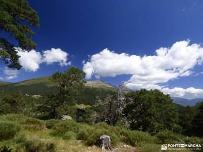 Tejos Rascafría-Valhondillo o Barondillo;rio borosa ruta el cañon del sil cañon de la horadada ca